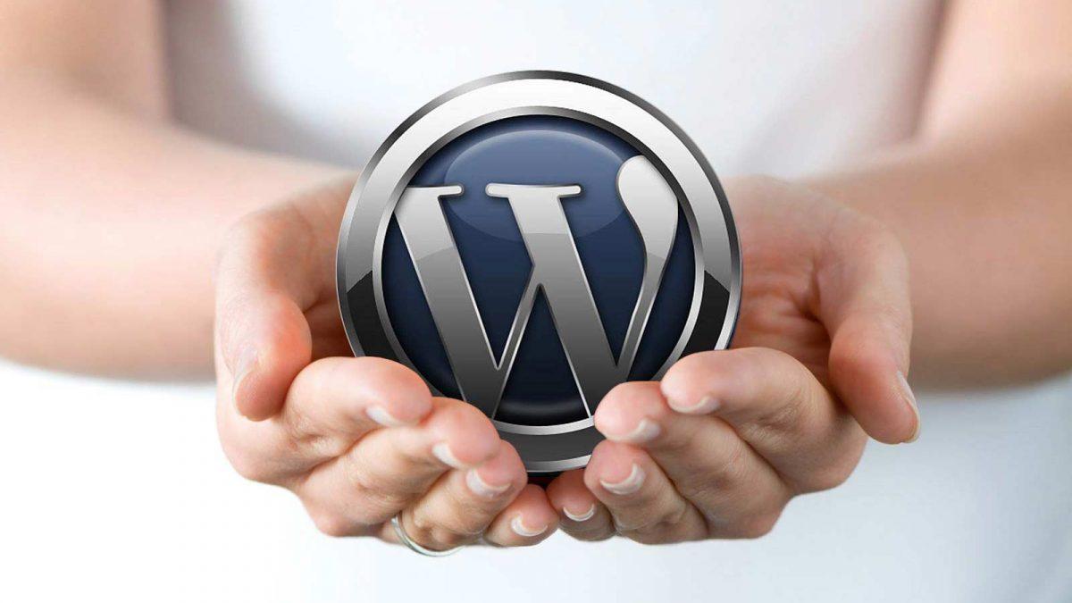 best web content management system development company